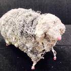 LM156 I'm Not Really White2,23x14x11cm,Concrete,Metal and Steel Wool-min